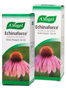Echinaforce 45ml Päevakübara tinktuur