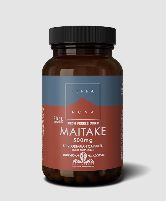 maitake 500mg TN