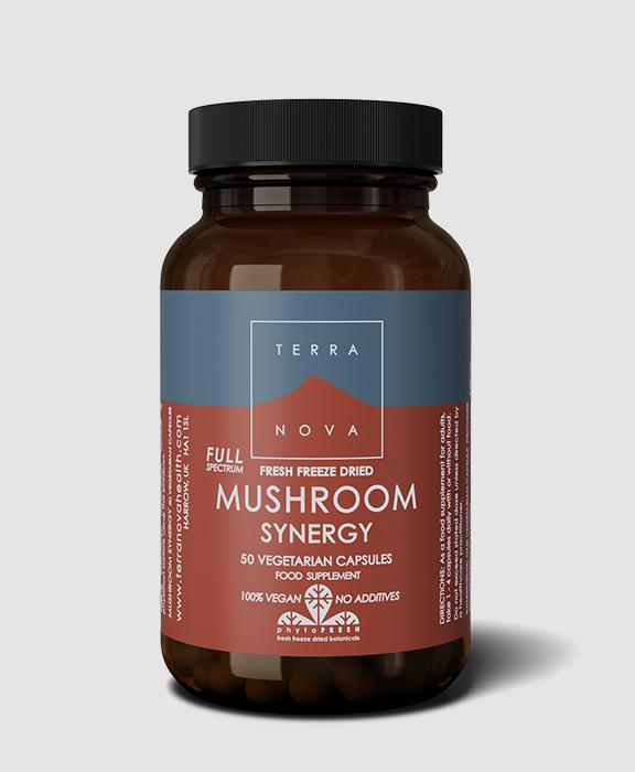 mushroom-synergy