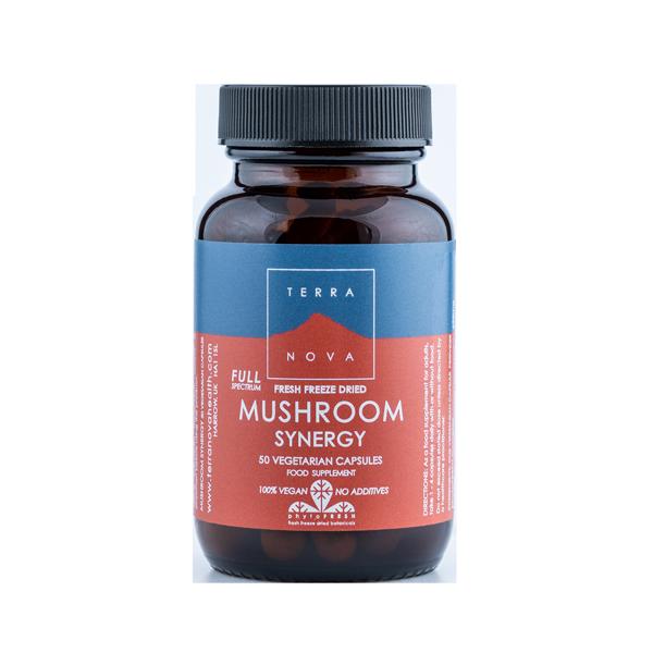 5060203793739 – Full Spectrum Mushroom Synergy 50 kaps, Terranova (Vegan)